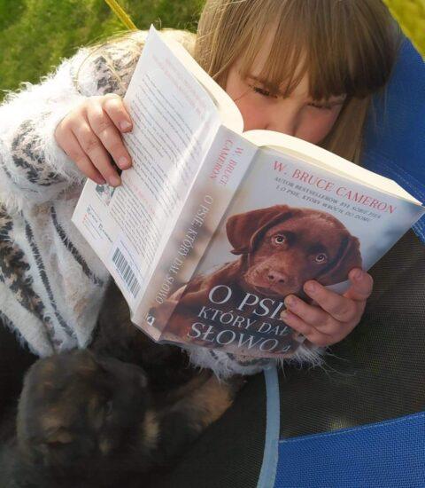 dziewczynka z otwartą książką w rękach siedzi wśród traw